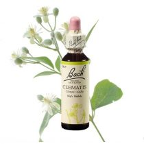 CLEMATIS - ISZALAG 20ml