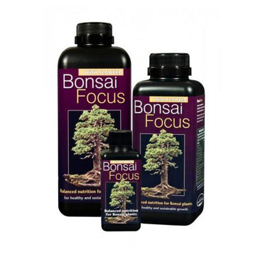 Bonsai Focus 100ml-től