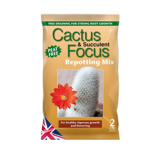 Growth Technology Cactus Focus földkeverék 2L-től