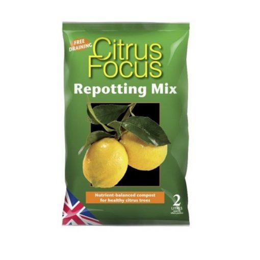 Growth Technology Citrus Focus földkeverék 8L